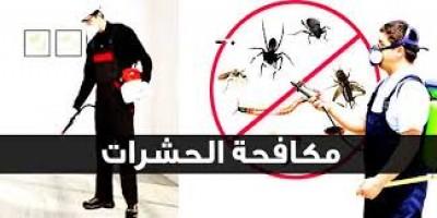 شركة-مكافحة-حشرات-بالرياض